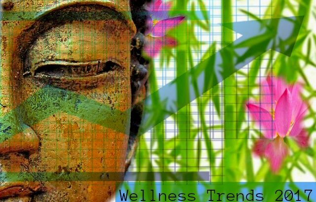 holistic health wellness trends