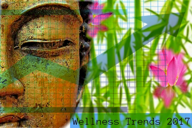 Holistic Health And Wellness Trends For 2017