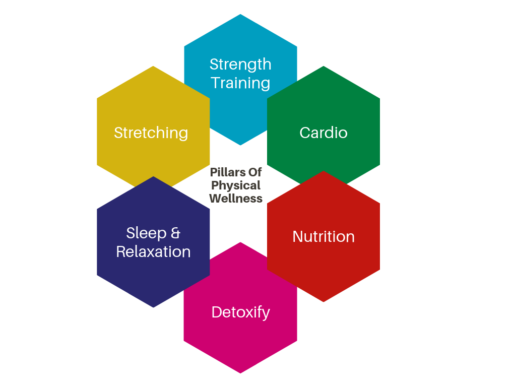 aspects of physical wellness pie chart